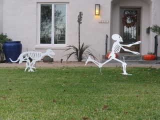 halloween funny pictures
